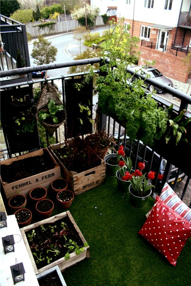 balcony garden. I've been there done that :)