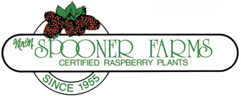 Ken M. Spooner Farms Certified Raspberry Plants. Your wholesale raspberry plant resource.