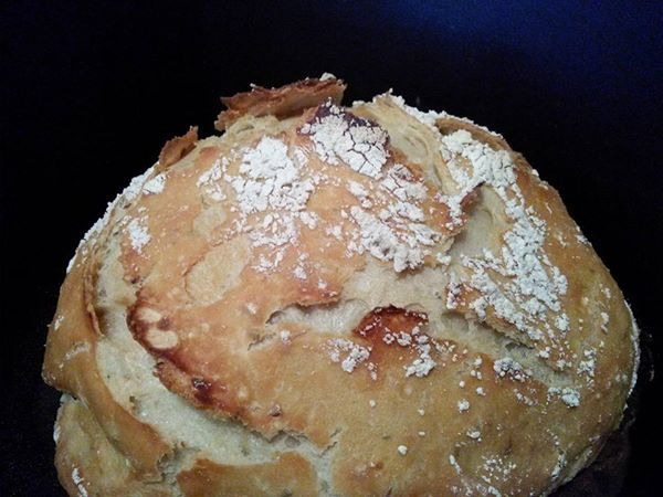 ... Pinterest | Rosemary bread, Amish friendship bread and Homemade breads