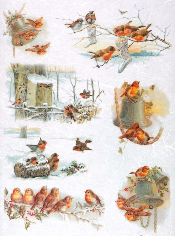 Rice Paper for Decoupage Decopatch Scrapbook Craft Sheet Vintage Bird Family