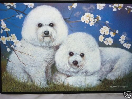 BICHON FRISE DOG ~ DOOR MAT ~ INDOOR/OUTDOOR USE