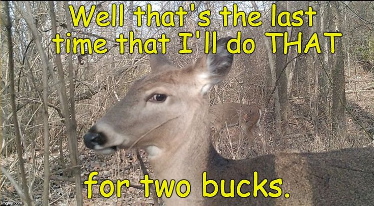 We'll that's the last #time I do that for #Two #Bucks #LetsGetWordy #IWantMyTwoDollars