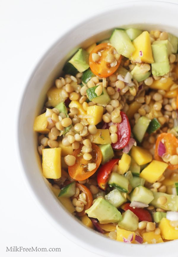 Lentil salad recipes using canned lentils nutrition