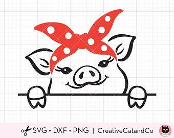Download Pig Bandana Svg Png Baby Pig with Bandana Svg Clipart Pig ...