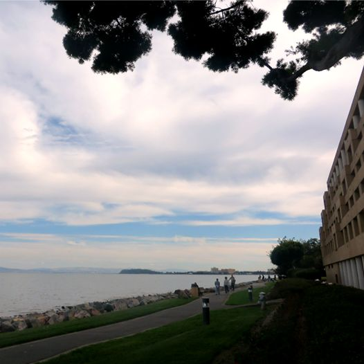Enjoying a cozy morning on the #SanFrancisco Bay! #SFAirportMarriott