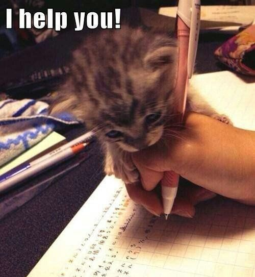 When my cat was little he did this when I was doing homework and then would lay on my work :)