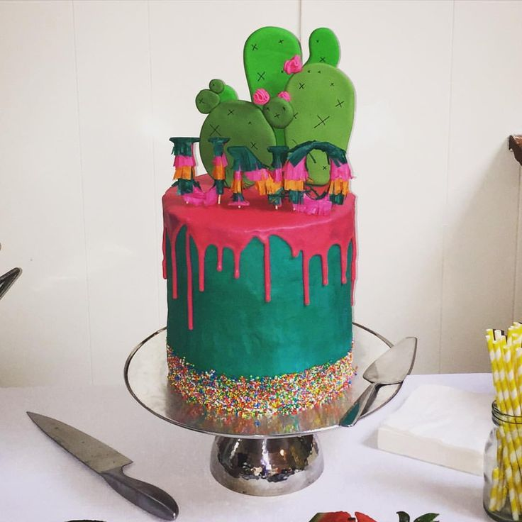 best 25 cactus cake ideas on pinterest edible