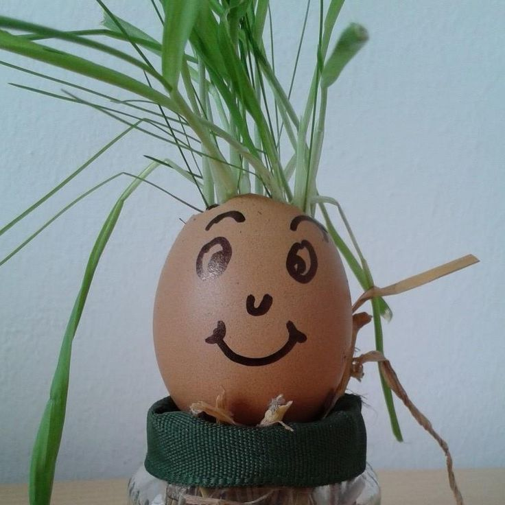 Easter Teste d'uovo!!!