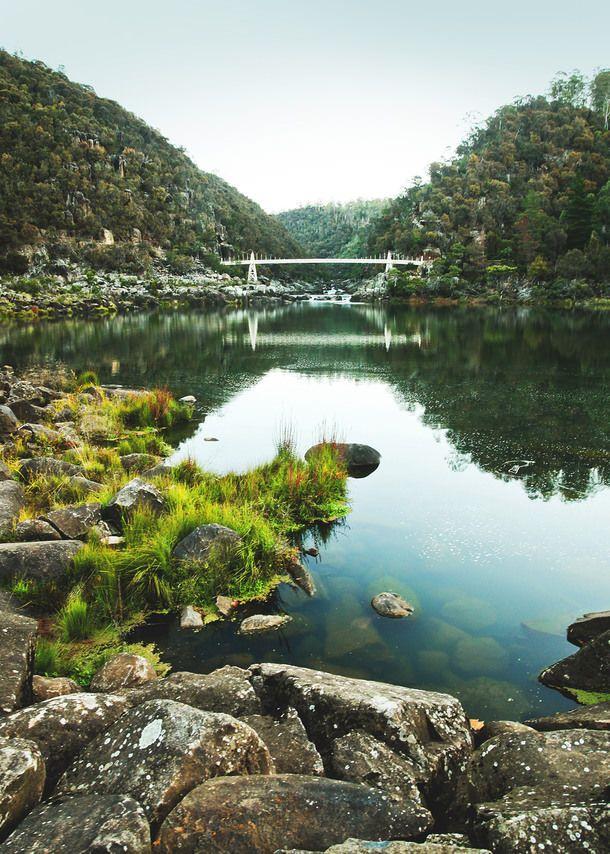 Launceston, Harvest Market and Festivale - Tasmania (A Table For Two)