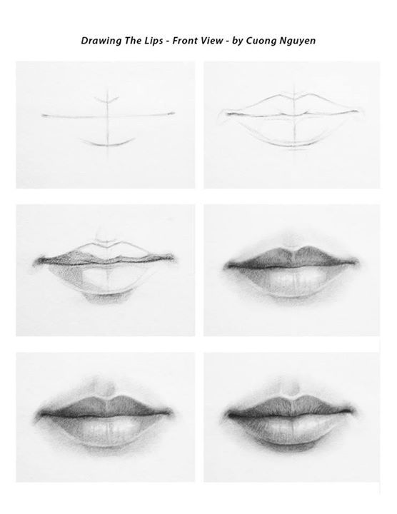 Drawing Lips - Front view step by step by Cuong Nguyen https://www.facebook.com/icuong?fref=photo (Diy Step How To Paint)
