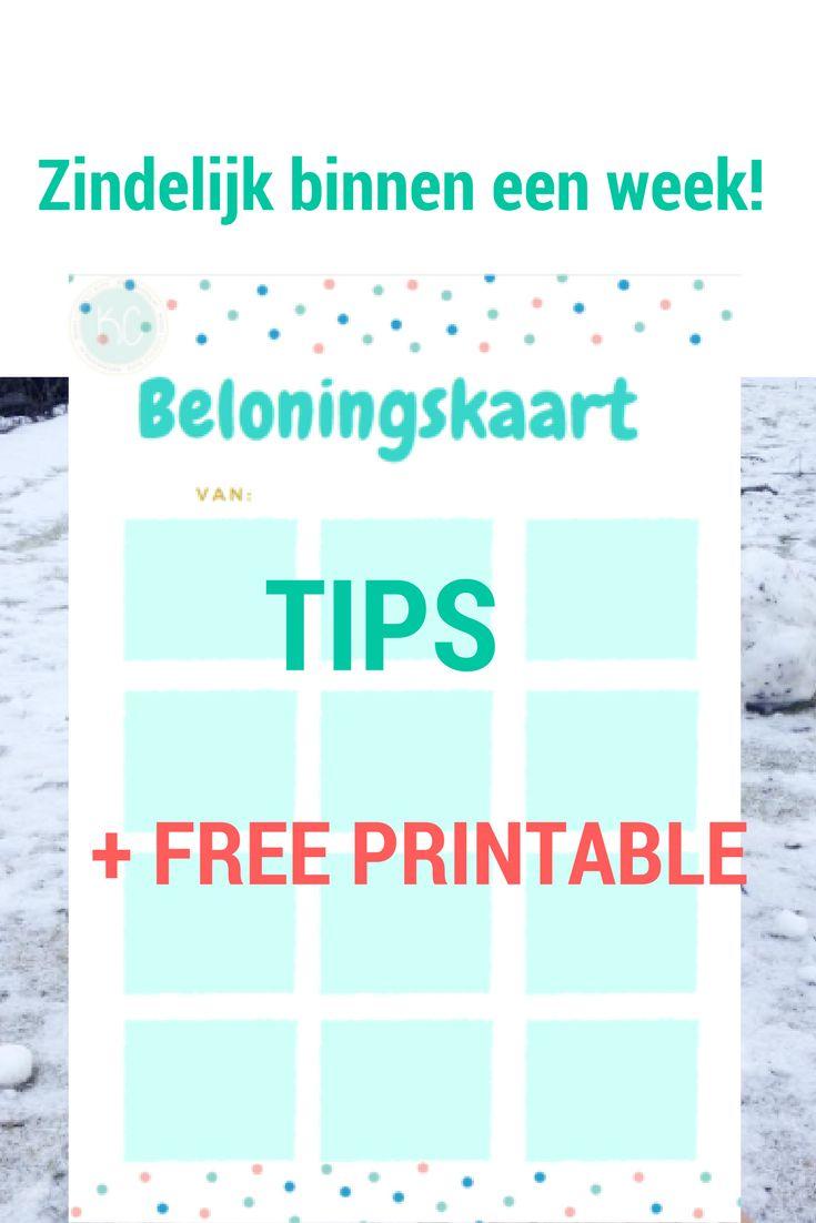 ZINDELIJK BINNEN EEN WEEK! + FREE PRINTABLE! Beloningskaart om je kindje te belonen bij zindelijkheidstraining! + TIPS