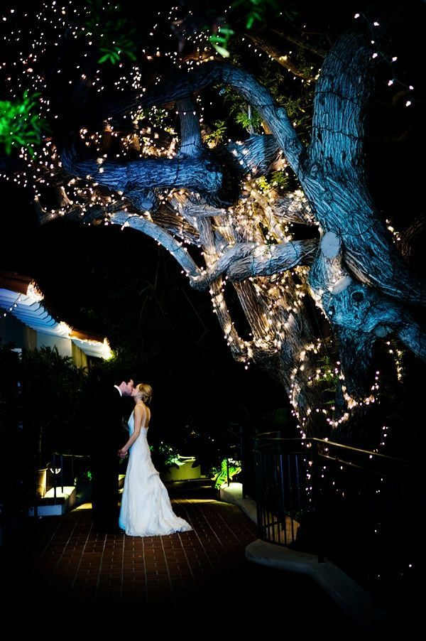 Pagan Wedding Decorations | Evening Weddings | Love The Lights! I Want An  Outdoor Evening