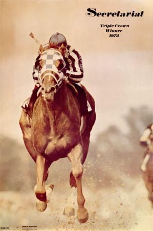 Colts Sired By Secretariat | What a Pleasure - Great Sire of Winners in History and Photos Forum