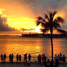 Key West sunset tonight - another stunner! #sunset #keywest #florida