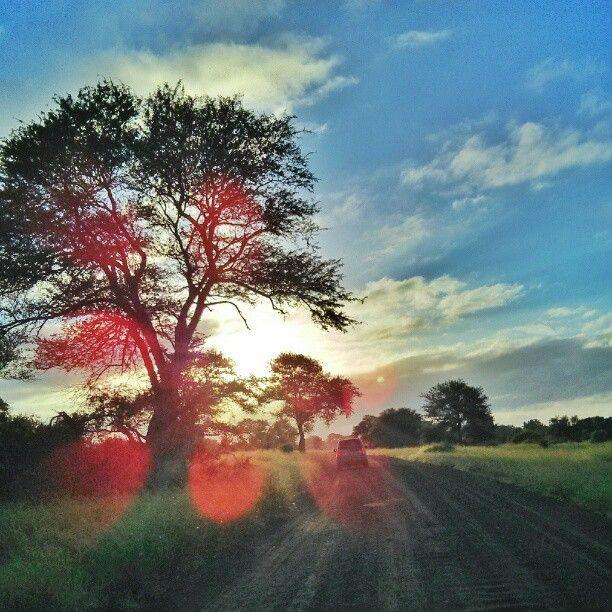 Kruger National Park 1980-2005