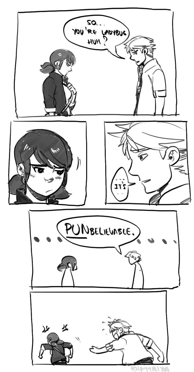 Khattriya Marinette Is Done With The Puns Miraculous