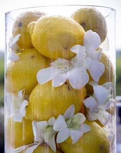 Lemon centerpiece    @Cristy Coit  could be pretty with little blue flowers too!