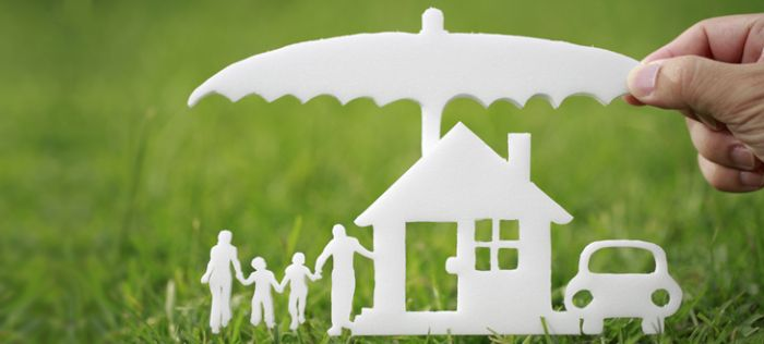 Fascinating facts about insurance