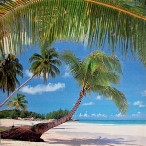 Island Paradise Small Print with Palm Trees Canvas Print - $8.00. Available from http://www.wallartroad.com/small-art-pieces-under-15-00/ #wall #art #road #canvas
