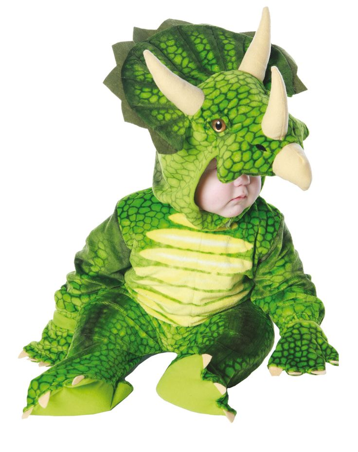 Another dinosaur costume possibility