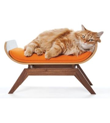 Shown On TouchofModern Canopystudio Midcentury Modern Felines: Tired Of The  Ubiquitous Tacky Pet Bed? Canopy Studio Has Designed This Piece Of Pet  Furniture ...