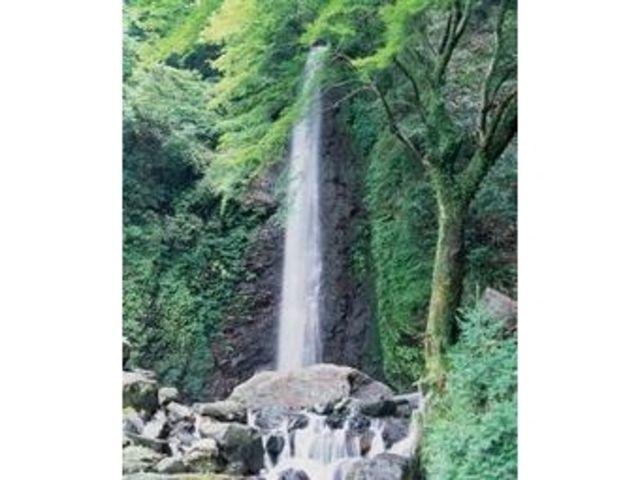 養老の滝は養老山地の巨岩老樹の中を流れ落ちる。高さ約30メートル、幅約4メートルの名瀑は、養老町のシンボル。