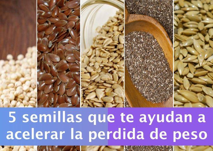 ¿Sabias tú que estas pequeñas semillas son muy poderosas y eficientes para el metabolismo de nuestro cuerpo? Conoce las 5 semillas que te ayudan a acelerar la perdida de peso.