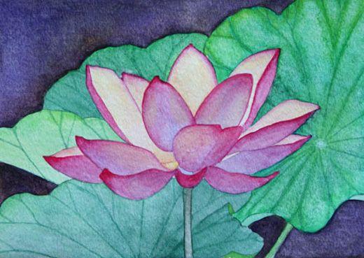 The Lotus Flower Series | Angie's Art Studio