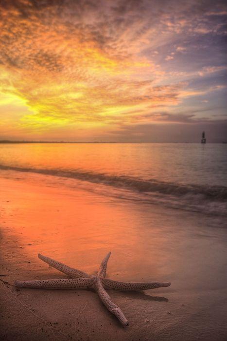 Pensacola Beach,Pensacola,Pensacola FL,Pensacola Florida,Starfish,Starfish on the beach,Dreams of Pensacola Beach,Dreaming of Pensacola Beach,The Florida Panhandle,Panhandle Beaches,Gulf Beaches,Gulf of Mexico,NW Florida,North West FL,The Emerald Coast,JC Findley,Sunrise,Sunset,beach sunrise,Florida Sunrises,Florida Sunsets,Pensacola Bay,The Gulf of Mexico,dreamy,seascape,