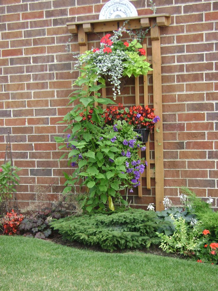 25 best images about garden trellis on pinterest for Decorating outdoor lattice