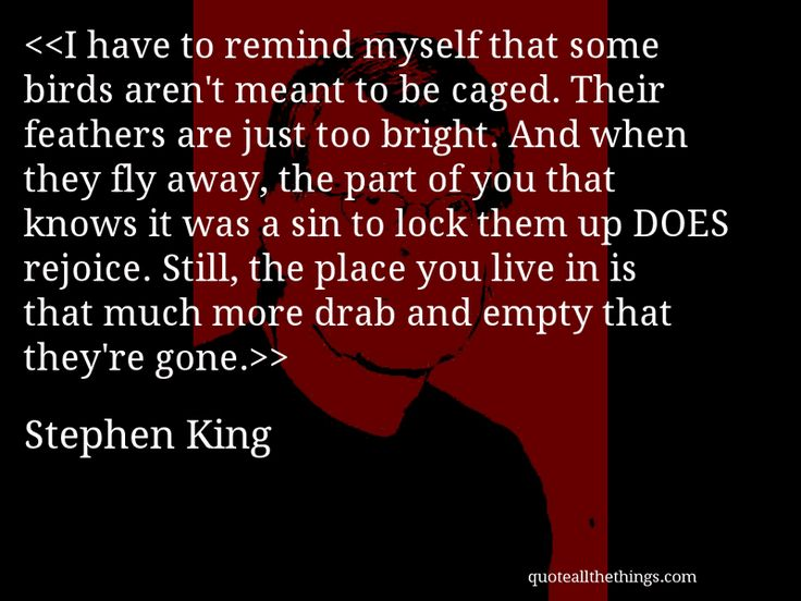 201 best stephen king quotes images on pinterest stephen for Some birds aren t meant to be caged tattoo