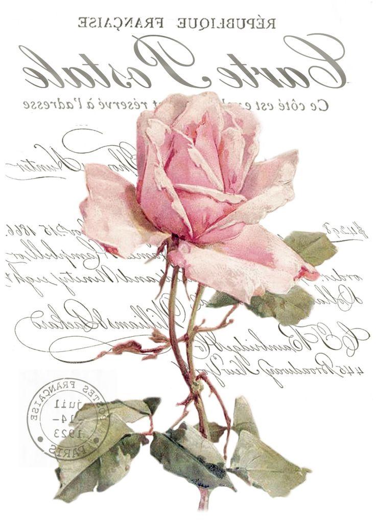 vintage rose digital collage p1022 transfer free