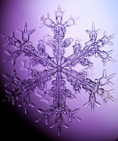 .To see snowflakes, you want a piece of black cloth. Catch a snowflake on it and look at it through a small magnifying glass.