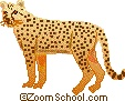 """Names of males, females, babies, and groups of animals. A group of cheetah is called a """"coalition""""."""