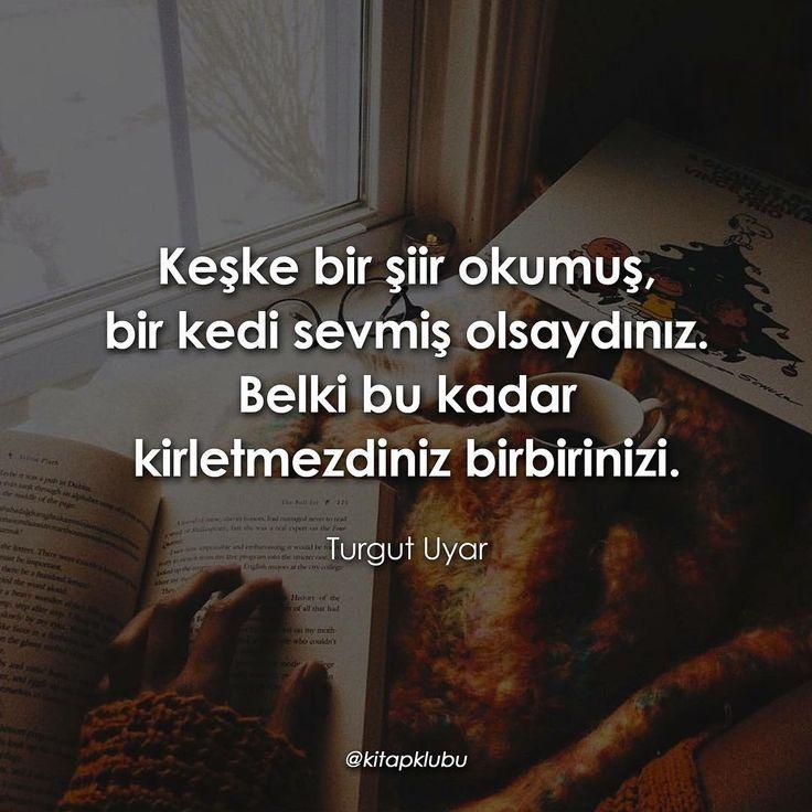 Keşke bir şiir okumuş, bir kedi sevmiş olsaydınız. Belki bu kadar kirletmezdiniz birbirinizi.   - Turgut Uyar   (Kaynak: Instagram - kitapklubu)   #sözler #anlamlısözler #güzelsözler #manalısözler #özlüsözler #alıntı #alıntılar #alıntıdır #alıntısözler #şiir #edebiyat