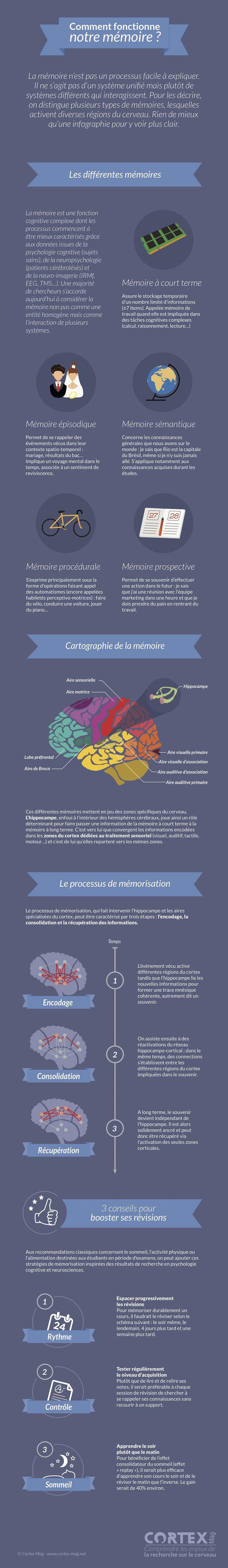 Une infographie pour décrire les différentes mémoires (de travail, sémantique…) et le processus de mémorisation, trois conseils pour booster ses révisions.