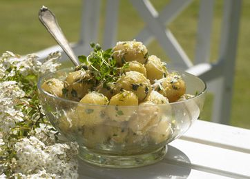 Kartofler i fransk pesto