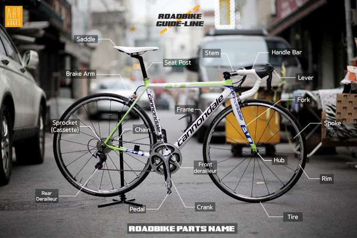 bicycle part name Infographics Design