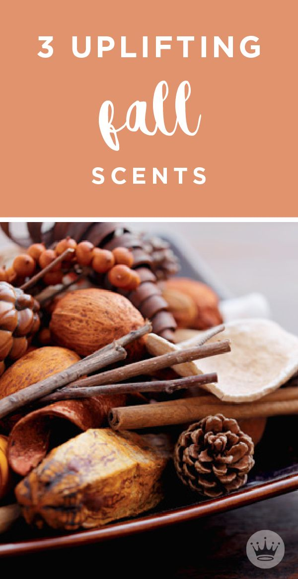 Scents have a way of bringing you back to a time and place, especially seasonal scents like pine, cinnamon, and pumpkin. These nostalgic fall scents are sure to ignite a sense of cheerfulness in your home and bring you back to the best Thanksgiving and holiday memories! Learn how to incorporate these fall smells into your home with these home decor ideas from Hallmark.