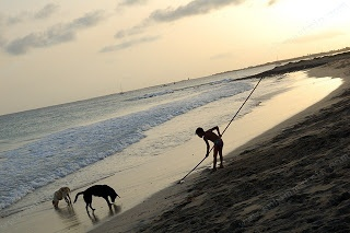Ragazzino gioca con i cani sulla spiaggia a Capo Verde durante il tramonto - Africa - Little boy playing with dogs on the beach during sunset in Cabo Verde