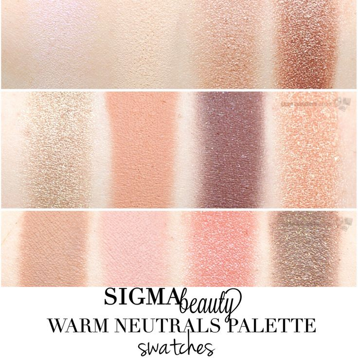 Sigma warm neutrals eye shadow palette swatches top l for Warm neutral color palette