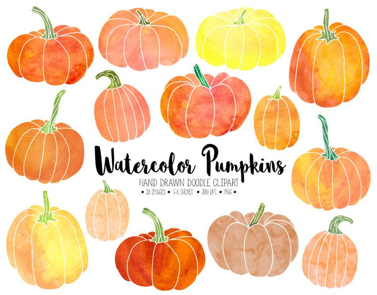 Watercolor Pumpkin Clipart. Hand Drawn by PixelGardenDesign