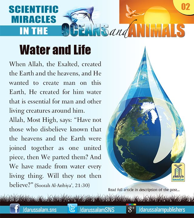 the miracles of science in islam You were created from a drop of miracle swimming to another miracle, a miracle was formed you were once unable to see, unable to touch, unable to speak the voice of.
