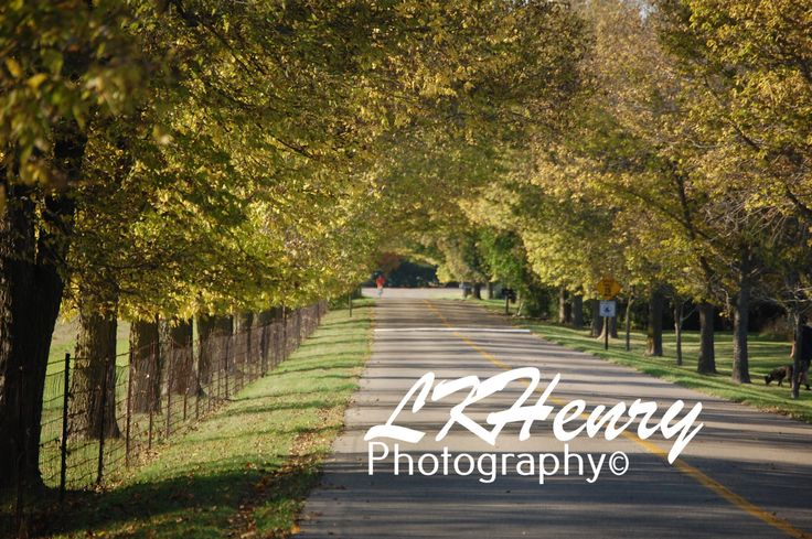 Road to Riches, Ann Arbor, MI by LKHenryPhotography on Etsy