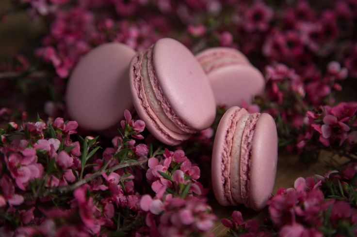 Manuka flowers and macarons,  Two of my favourite things 🌸🌸🌸