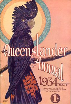 Vintage reproduction print of a preening red-tailed black cockatoo, native to Australia, and now threatened by the illegal trade in bird smuggling. On the cover of The Queenslander Annual  for 1934.