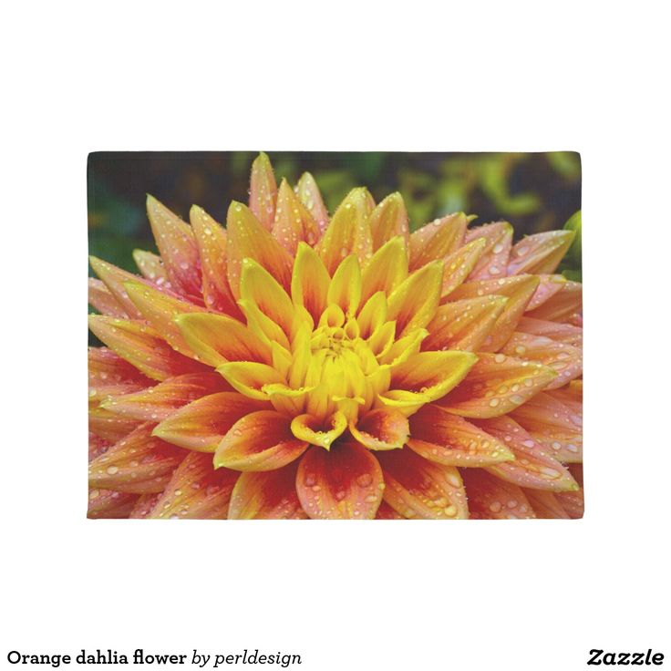 Orange dahlia flower door mat