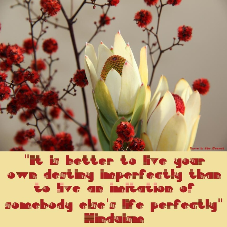 18 best Hindu quotes images on Pinterest | Hindu quotes ...