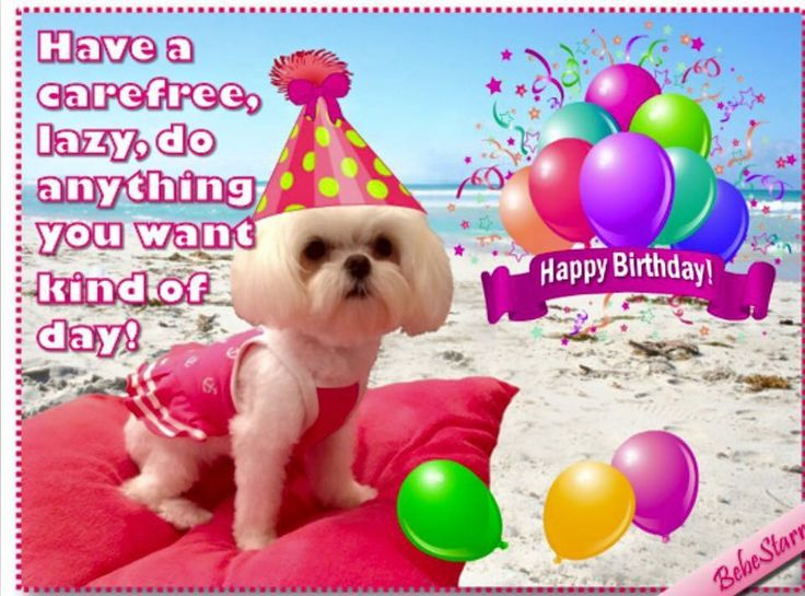 106 Best Birthday Wishes Quotes Images On Pinterest Birthday Happy Birthday Wishes For A Family Member