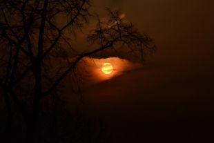 sunset / victoria park / berlin